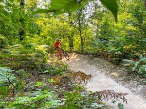 Beginnen met mountainbiken: avontuur en uitdaging